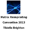 Matrix Convention 2013